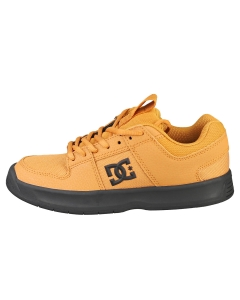 DC Shoes LYNX ZERO Kids Casual Trainers in Wheat