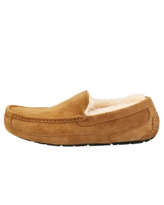 UGG ASCOT Men Slippers Shoes in Chestnut